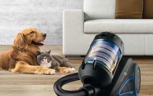 aspirador, Taurus, Animal Care, mascotas, limpieza, aspirador ciclónico, filtro HEPA, cepillo, aspirar la casa, aspirar pelos de perro, gato, perro, pájaro, pyrrhura