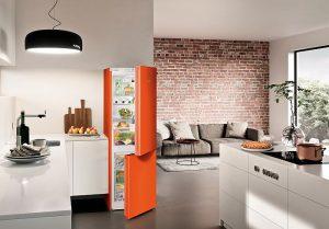 DuoCooling, Frigicoll, Liebherr, nivel óptimo de humedad en el frigorífico, NoFrost, Value Line