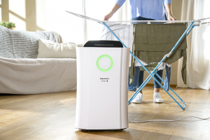 deshumidificador, purificador de aire, taurus, DH243, filtros, aire limpio, pequeño electrodoméstico