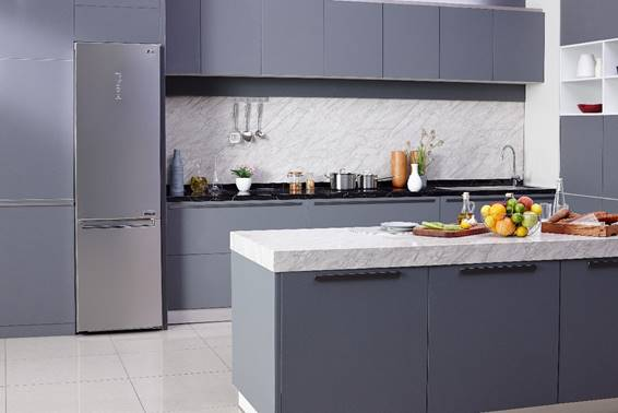 frigoríficos combi LG, frigoríficos ecoeficientes, LG, cajón fresh converter, 20 años de garantía, fresh balancer, tecnología doorcooling+, linearCooling