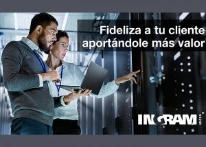 Ingram Micro servicios profesionales