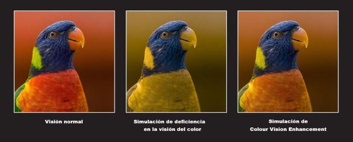 Colour Vision OPPO
